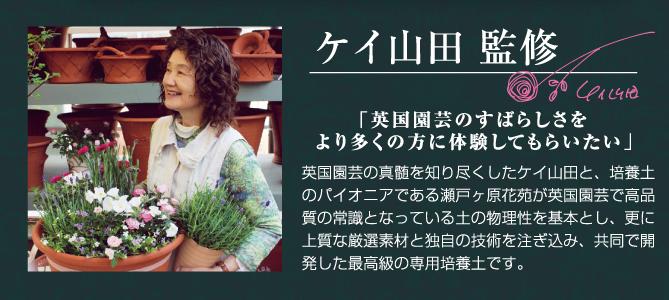ケイ山田バナー